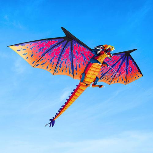 The 10 Foot Dragon Kite