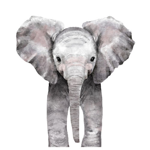Baby Animal Elephant by Cass Loh - Animal Arts for Baby Nursery