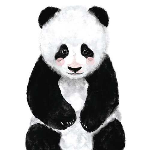 Baby Panda by Cass Loh - Animal Arts for Baby Nursery