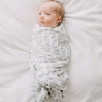 Super Soft Classic Set of 3 Dottie Bee Organic Muslin Swaddle Blankets