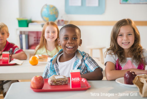 Tips: How to Make Children Eat Their School Lunches