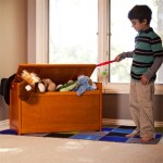Let Your Kids Be More Creative With Organizing Their Toys In Beechwood Toy Chest
