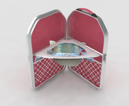 Little House Concept Potty-Great for Young Toddlers
