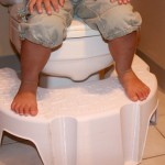 Little Looster's Looster Booster : U-Shaped Step Stool Design for Toddlers