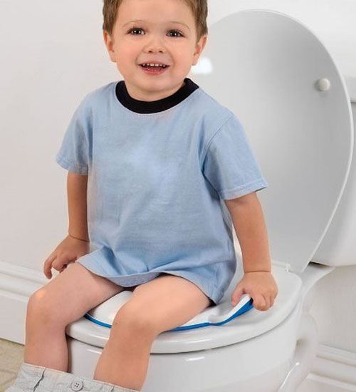 Munchkin Arm and Hammer Secure Comfort Potty Seat