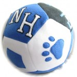 Personalized Giant Fleece Ball-A Personalized Ball for Your Kid's Team
