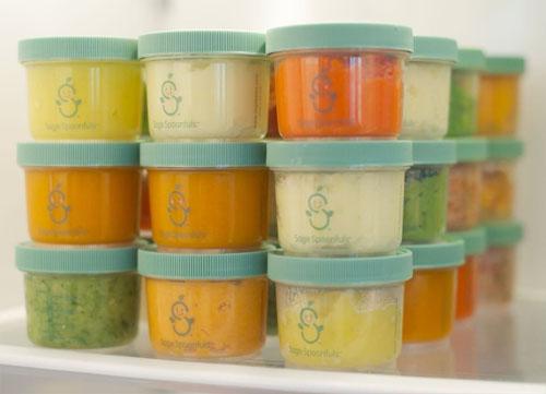 Sage Spoonfuls Baby Food Maker
