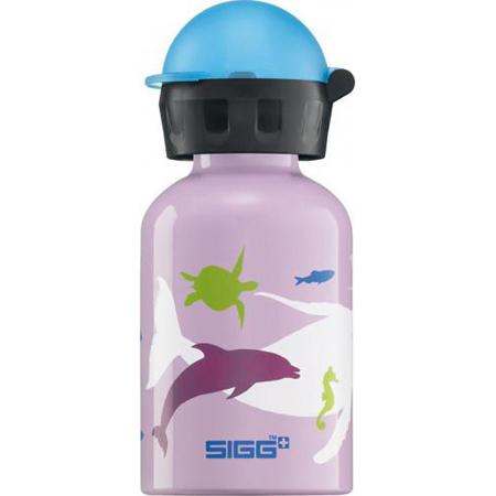 SIGG Drinking Bottle