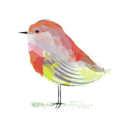 Starburst Little Bird by Sara Shashani - Animal Arts for Baby Nursery