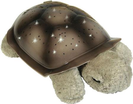 turtle11