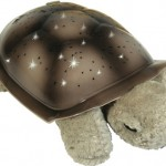 Twilight Turtle - A Perfect Present for All Ages