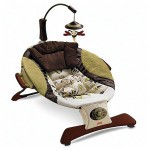 Fisher Price Zen Infant Seat : Perfect Balance for Your Baby